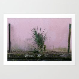 Charleston, SC Foliage Art Print