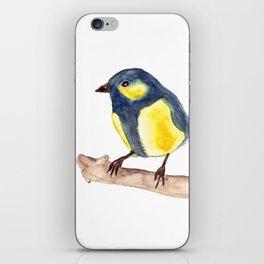 Blue Pinzon iPhone Skin