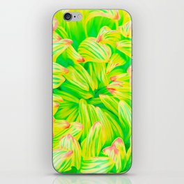 Pop Art Inspired Flower - Green Yellow iPhone Skin