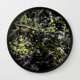 Mossy Stones Wall Clock