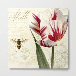 Natural History Sketchbook I Metal Print