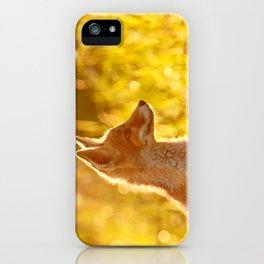 Le P'tit Renard iPhone Case