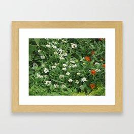 Tiny Flowers Framed Art Print