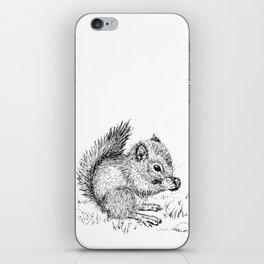 Baby Squirrel iPhone Skin