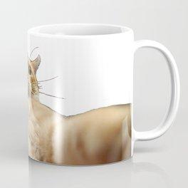 Cat Selfie Coffee Mug