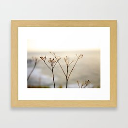 Edge of the World, USA Framed Art Print