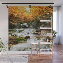 Autumn Forest Waterfall Wall Mural