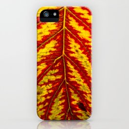 Tiger Leaf iPhone Case
