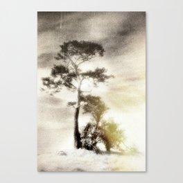 Deadly silence... Canvas Print