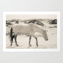 Wild Horses 3 - Black and White Art Print