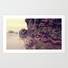 Starfish Addicted  Art Print