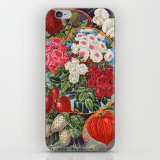 Antique seed mix iPhone & iPod Skin