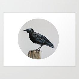 The Crow Art Print