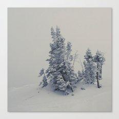 Lost Inside a Snow Cloud Canvas Print