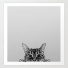 Peekaboo Cat Art Print