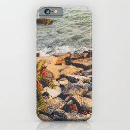 Rocks Beach iPhone Case