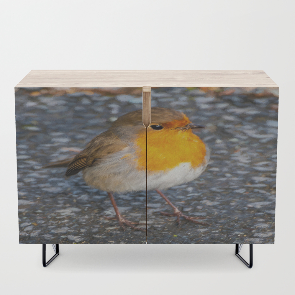 Robin Redbreast Birch Credenza with Black Legs by Adrianevans (CDZ10082638) photo