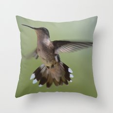 Hummingbird in Flight Throw Pillow