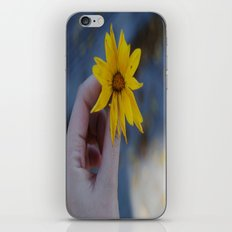 Daisy iPhone & iPod Skin