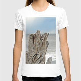 Looking past the Driftwood T-shirt