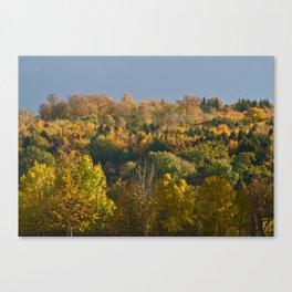 Pure Autumn Colours Canvas Print