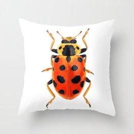 Orange Beetle Throw Pillow