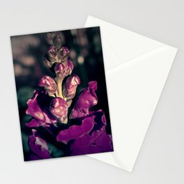 Lupinus-Purple Stationery Cards