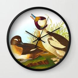 Bufflehead Duck Vintage Illustration Wall Clock