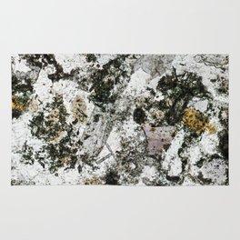 Hornfels 02 - Frozen Still Life Rug