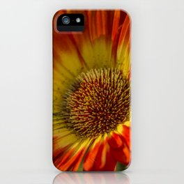 Orange Daisy iPhone Case