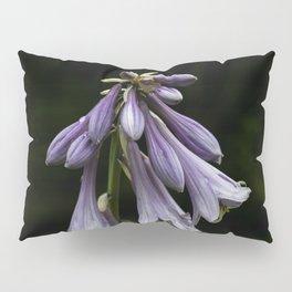 Plantain lilies Pillow Sham