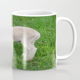 Congratulations On Your New Arrival Coffee Mug