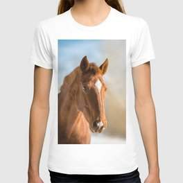 Brown Horse Winter Sky T-shirt