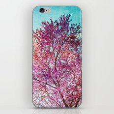 Spring Tree 3 iPhone & iPod Skin