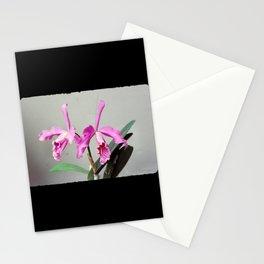 Cattleya Stationery Cards