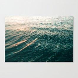 Observation Canvas Print
