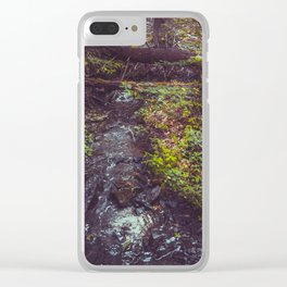 Stream at Little Pond Clear iPhone Case