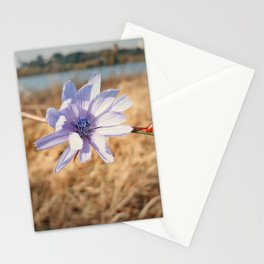 chicory Stationery Cards