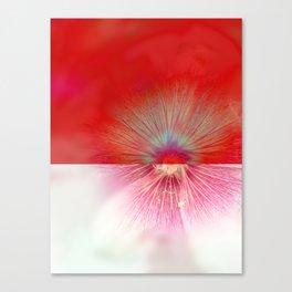 insideout Canvas Print