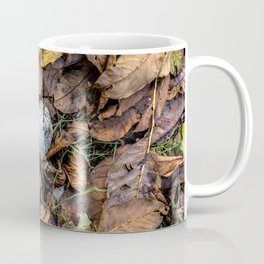 Summer is gone, Autumn is finally here Coffee Mug