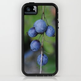 Looks like blueberries iPhone Case