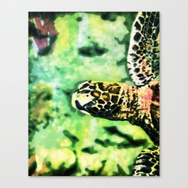 Pop art turtle Canvas Print