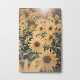 Sunset Sunflower Metal Print