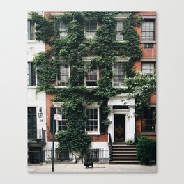 Cutie on the Loose / New York City Canvas Print