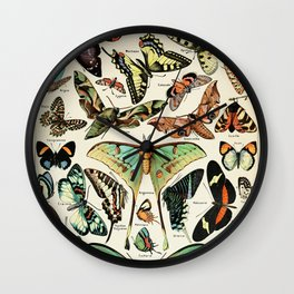 Papillon I Vintage French Butterfly Charts by Adolphe Millot Wall Clock