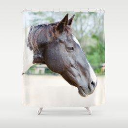 Delicate Decco Shower Curtain
