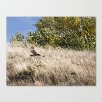 hunting Canvas Prints featuring Hunting by Bryan Simons