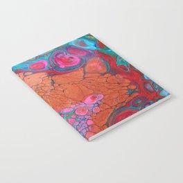 Reticulum Notebook