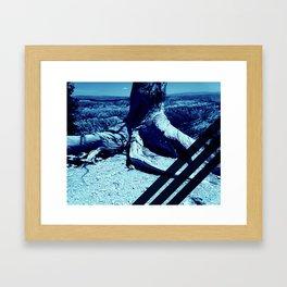 Blue Grid on Nature Framed Art Print