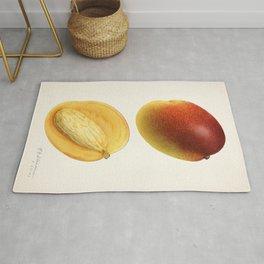 Mangoes (Mangifera Indica) (1923) by Royal Charles Steadman Rug